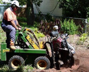 modified Kanga terminator stump grinder
